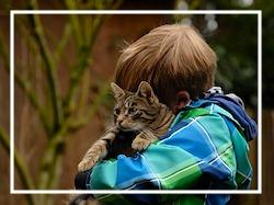 International Hug Your Cat Day