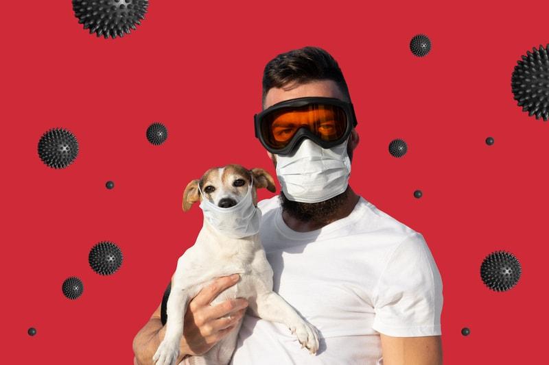 Coronavirus and Your Pet